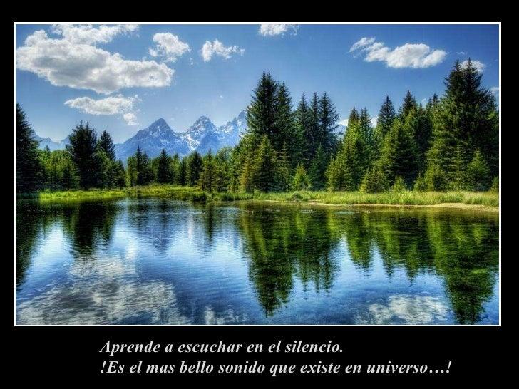 Aprende a escuchar en el silencio. !Es el mas bello sonido que existe en universo…!