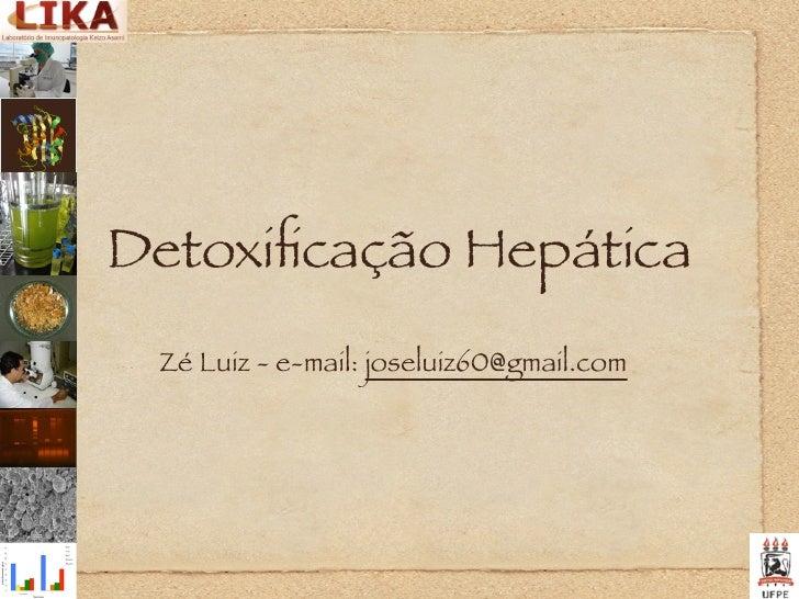 Detoxificação Hepática  Zé Luiz - e-mail: joseluiz60@gmail.com