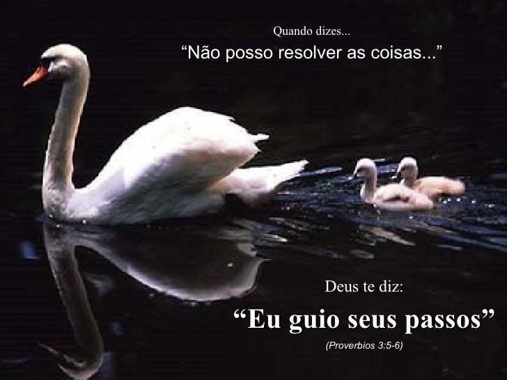 """Quando dizes... """" Não posso resolver as coisas..."""" Deus te diz: """" Eu guio seus passos"""" (Proverbios 3:5-6)"""