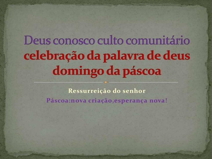 Ressurreição do senhorPáscoa:nova criação,esperança nova!