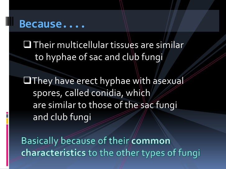 Materii asexual definition