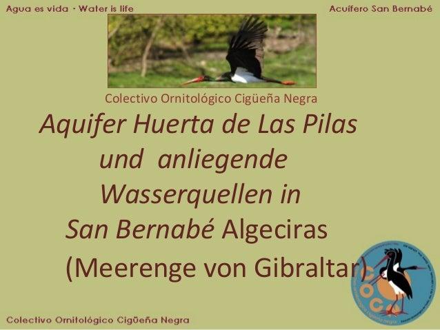 Colectivo Ornitológico Cigüeña Negra  Aquifer Huerta de Las Pilas und anliegende Wasserquellen in San Bernabé Algeciras (M...