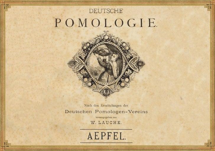 Deutsche Pomologie (1883)