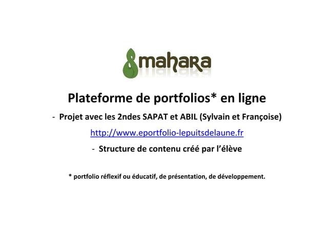 Plateforme de portfolios* en ligne - Projet avec les 2ndes SAPAT et ABIL (Sylvain et Françoise) http://www.eportfolio-lepu...