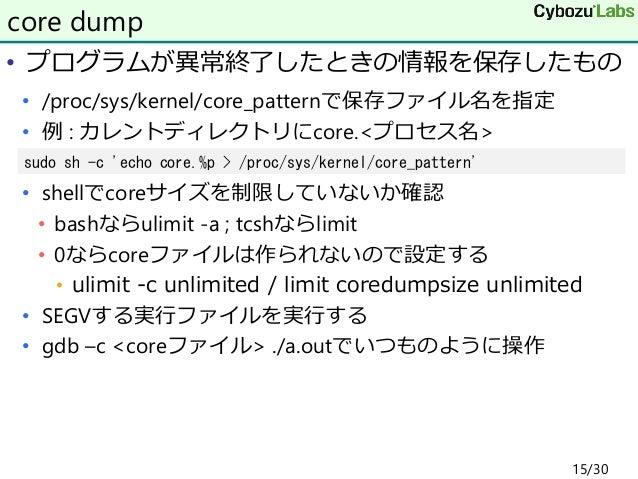 • プログラムが異常終了したときの情報を保存したもの • /proc/sys/kernel/core_patternで保存ファイル名を指定 • 例 : カレントディレクトリにcore.<プロセス名> • shellでcoreサイズを制限していな...