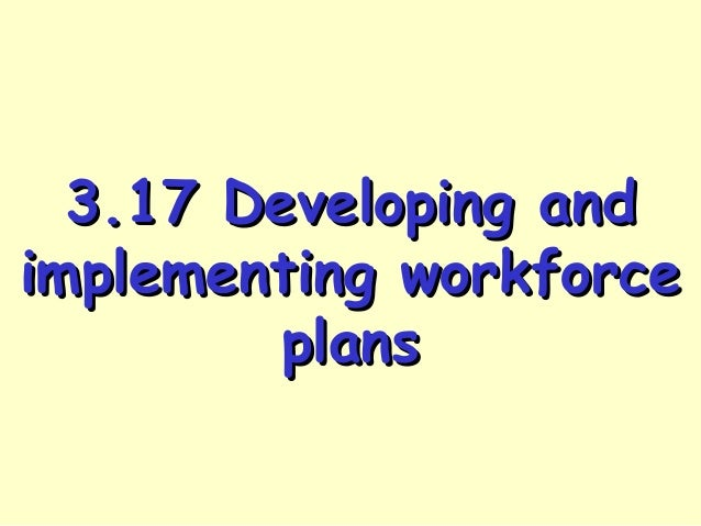 3.17 Developing and implementing workforce plans