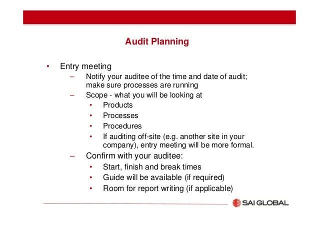 17129338 internal-audit-manual.