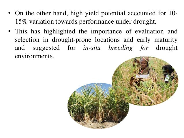 Plant Breeding For Water-limited Environments Ebook