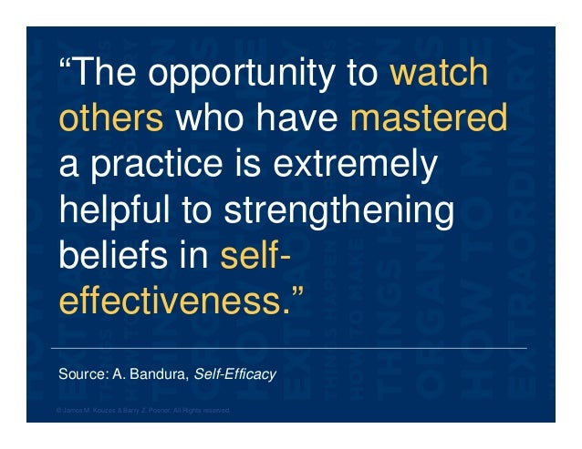"""Source: A. Bandura, Self-Efficacy """"The opportunity to watch others who have mastered a practice is extremely helpful to st..."""