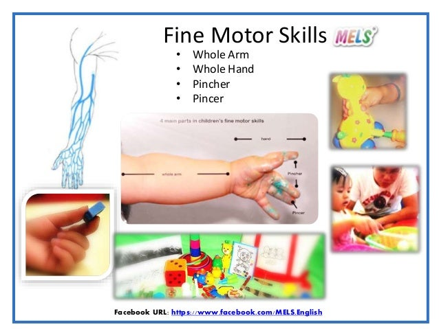 Developing Fine Motor Skills With Meaningful Activities 2017