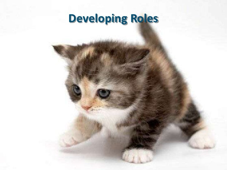 Developing Roles