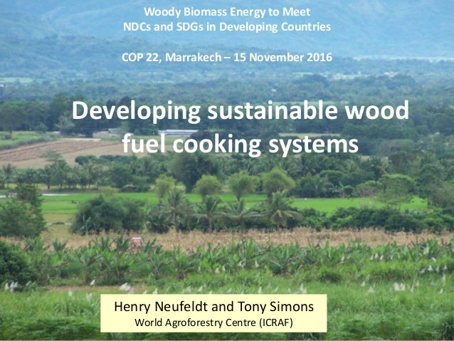 Developing sustainable wood fuel cooking systems for Why is wood sustainable