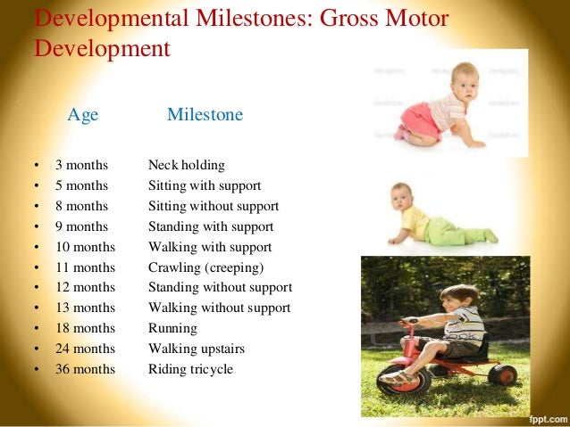 ... upstairs Riding tricycle; 37. Fine Motor Age Milestone 4 months ...