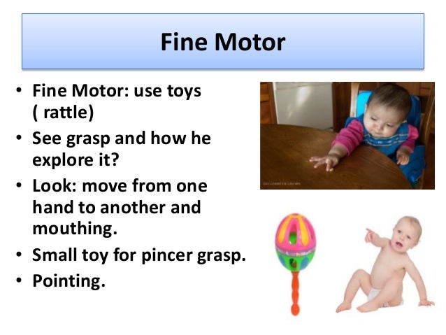 Fine Motor: • Holds rattles (3 months), • palmer grasp objects(5 mths), • transfer cubes(7 mths), • Raisins for pincer gri...