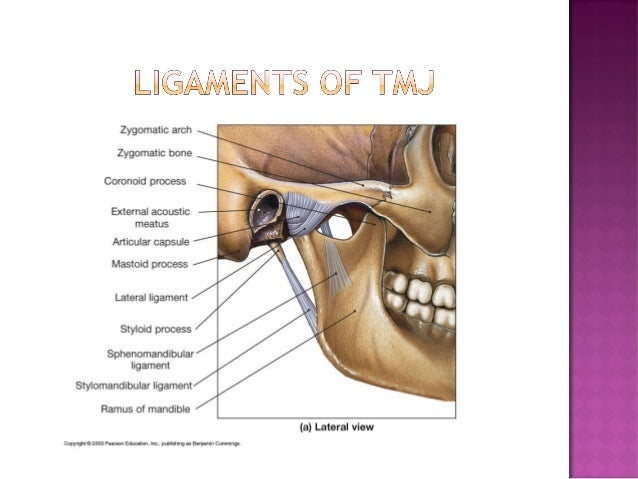 Development and anatomy of temporomandibular joint