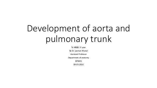 Development of aorta and pulmonary trunk To MBBS 1st year By Dr. Laxman Khanal Assistant Professor Department of anatomy B...