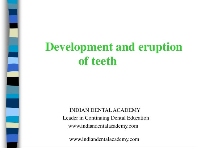 Development and eruption      of teeth     INDIAN DENTAL ACADEMY   Leader in Continuing Dental Education     www.indianden...