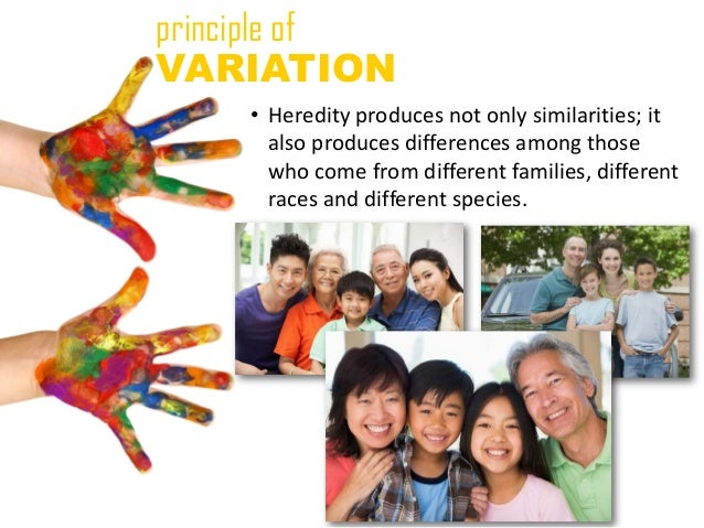 principle ofVARIATION    • Heredity produces not only similarities; it      also produces differences among those      who...