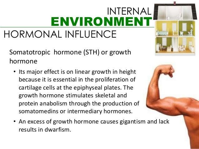 INTERNAL               ENVIRONMENTHORMONAL INFLUENCESomatotropic hormone (STH) or growthhormone • Its major effect is on l...