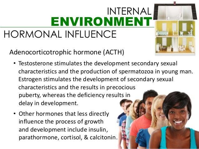 INTERNAL              ENVIRONMENTHORMONAL INFLUENCEAdenocorticotrophic hormone (ACTH) • Testosterone stimulates the develo...