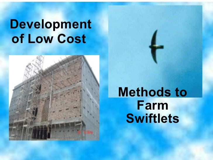 Development of Low Cost   Methods to Farm Swiftlets