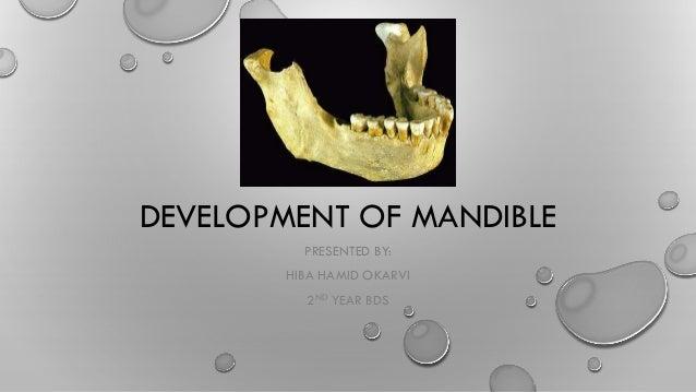 DEVELOPMENT OF MANDIBLE PRESENTED BY: HIBA HAMID OKARVI 2ND YEAR BDS