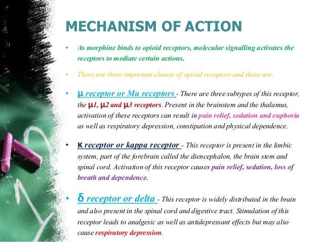 morphine mechanism of action