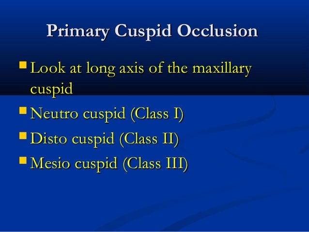 Primary Cuspid OcclusionPrimary Cuspid Occlusion  Look at long axis of the maxillaryLook at long axis of the maxillary cu...