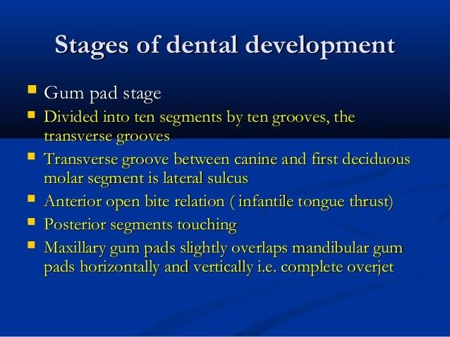 Stages of dental developmentStages of dental development  Gum pad stageGum pad stage  Divided into ten segments by ten g...