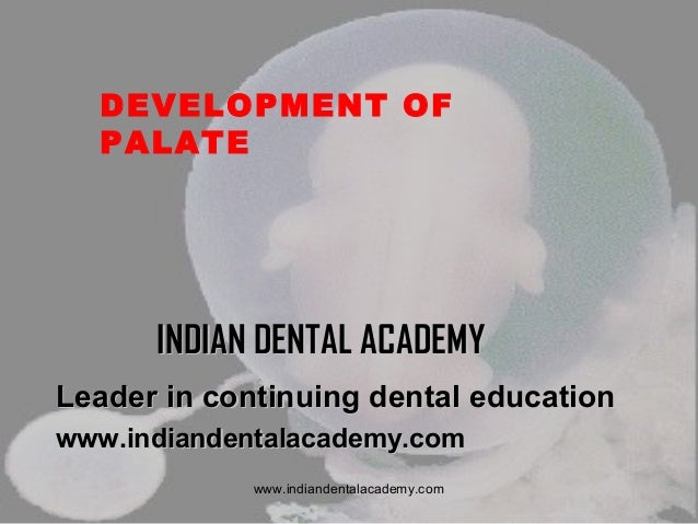 DEVELOPMENT OF PALATE  INDIAN DENTAL ACADEMY Leader in continuing dental education www.indiandentalacademy.com www.indiand...