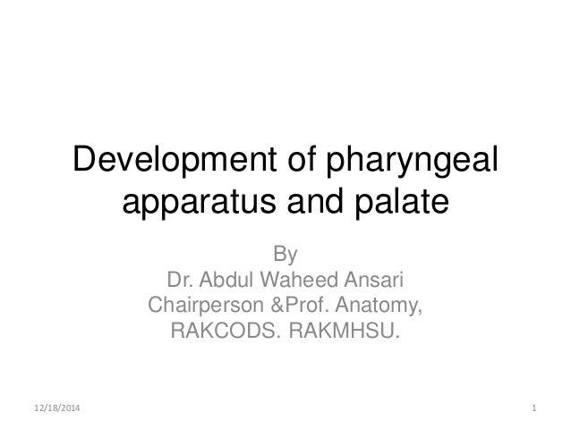 Development of pharyngeal apparatus and palate By Dr. Abdul Waheed Ansari Chairperson &Prof. Anatomy, RAKCODS. RAKMHSU. 12...