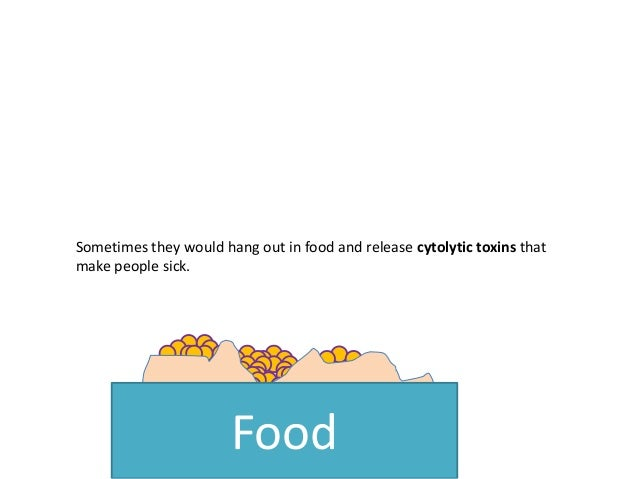 Sometimes they would hang out in food and release cytolytic toxins that make people sick. Food