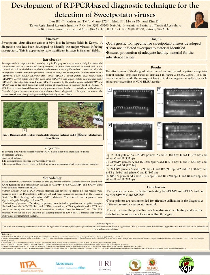 Development of RT-PCR-based diagnostic technique for the detection of Sweetpotato viruses
