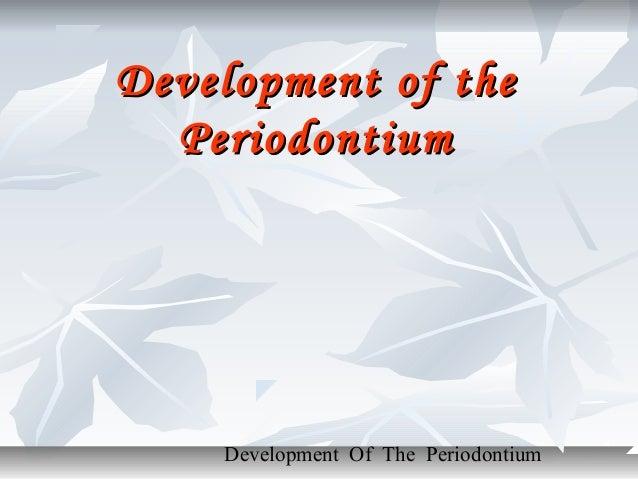 Development of the  Periodontium    Development Of The Periodontium
