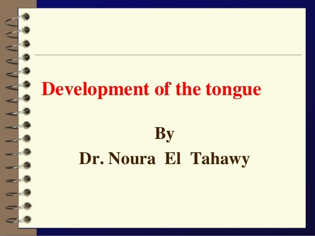 Development of the tongue  By  Dr. Noura El Tahawy