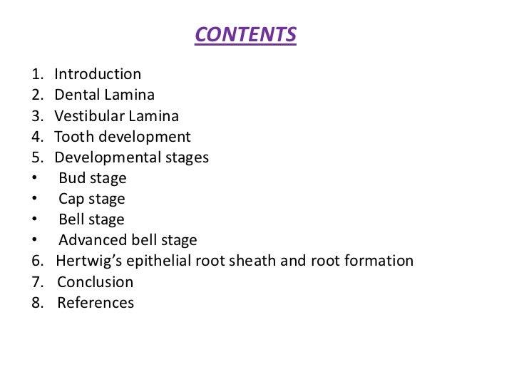 Development of tooth Slide 2