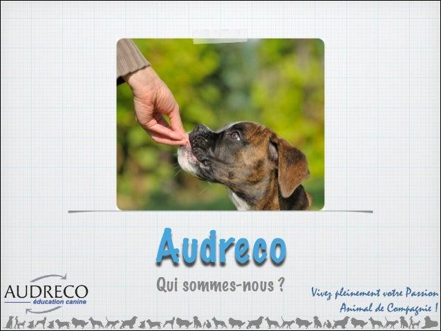 Devenez éducateur canin comportementaliste Slide 2