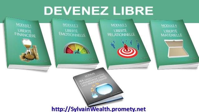 http://SylvainWealth.promety.net