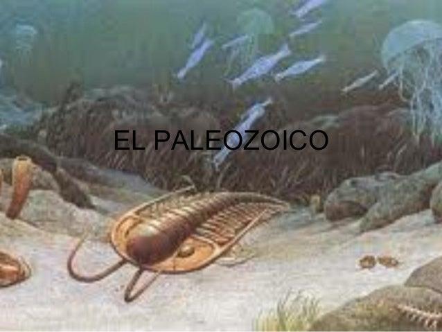 EL PALEOZOICO