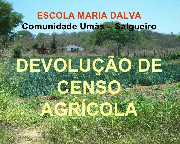 ESCOLA MARIA DALVA Comunidade Umãs – Salgueiro DEVOLUÇÃO DE CENSO AGRÍCOLA