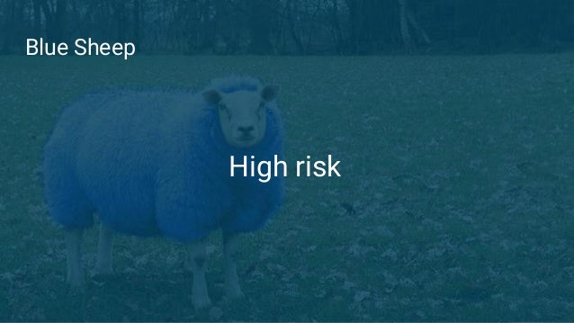 Blue Sheep High risk