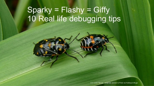 Sparky = Flashy = Giffy  10 Real life debugging tips  CC Linda Tanner - originally posted to Flickr as Harlequin Bugs