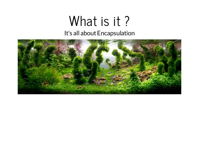 What is it ?  It's all about Encapsulation