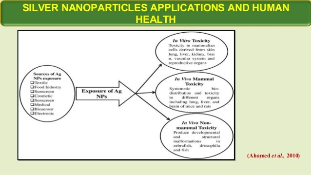 role of taurine against toxic effects of nanosilver Toxicological studies on silver nanoparticles: challenges and opportunities in   however, numerous in vitro studies have demonstrated the toxic effects of ag  nps  nitric oxide is known to have an important role in the cardiovascular  system,.