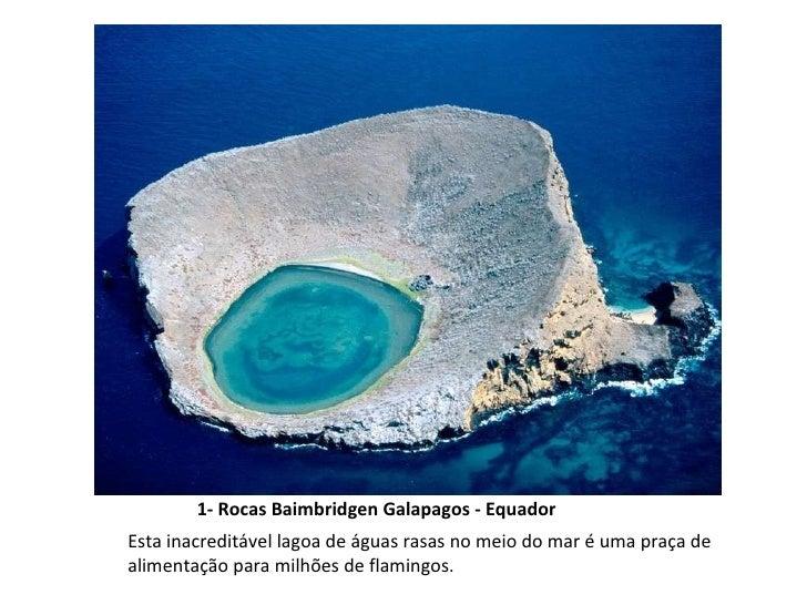 1- Rocas Baimbridgen Galapagos - Equador Esta inacreditável lagoa de águas rasas no meio do mar é uma praça de alimentação...