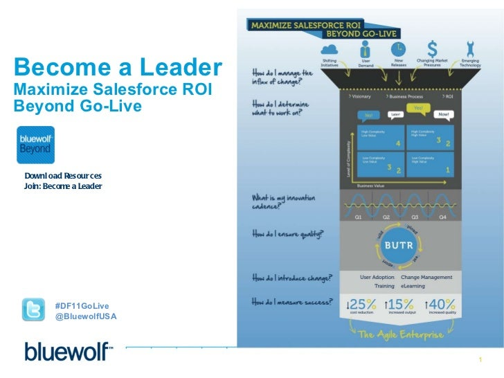 Become a Leader  Maximize Salesforce ROI  Beyond Go-Live Download Resources Join: Become a Leader #DF11GoLive @BluewolfUSA