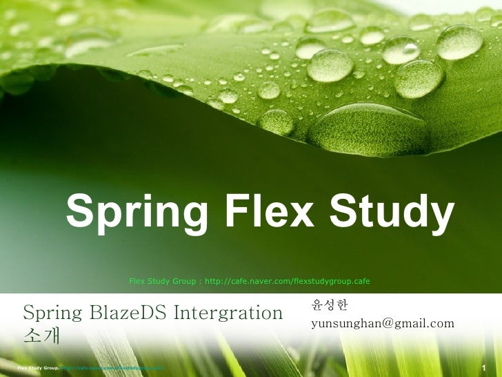 Spring BlazeDS Intergration  소개 <ul><li>윤성한 </li></ul><ul><li>[email_address] </li></ul>Flex Study Group : http://cafe.nav...