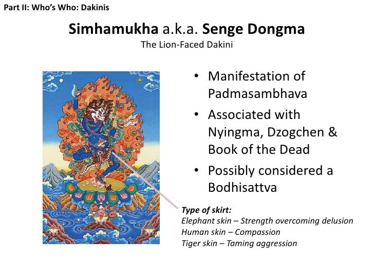 Tibetan Buddhism for Dharma Dummies