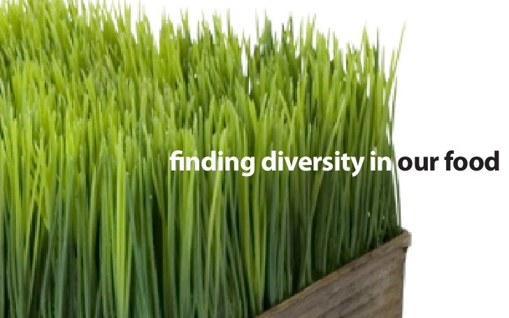 nding diversity in our food