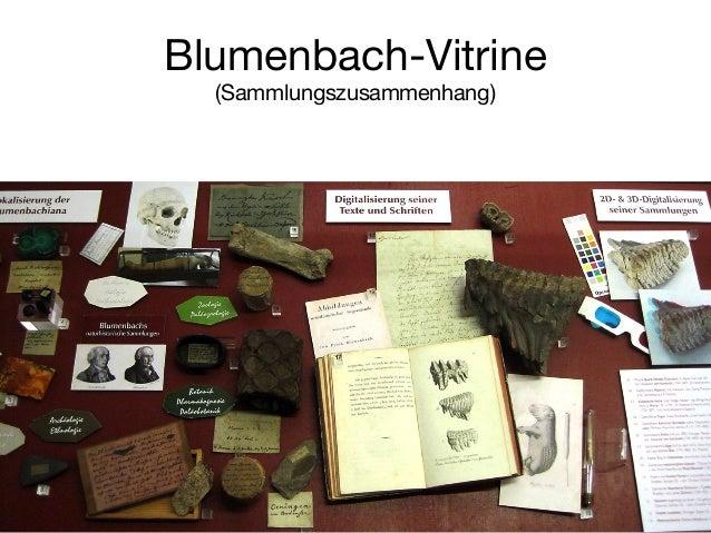"""Beispiel: Blumenbach Online  Vorteil: """"echte"""" Images im Dateisystem"""